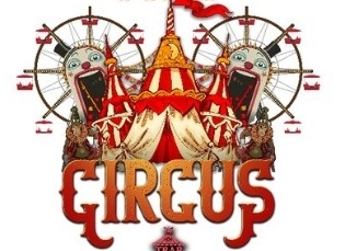 The circus show at Stereo